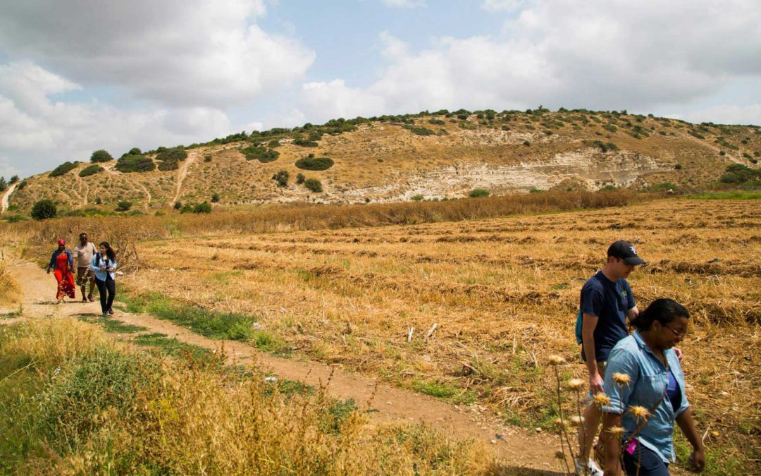 Valley of Elah: King Saul's Fear of Man