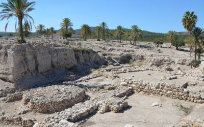 Megiddo: A Place of Hope